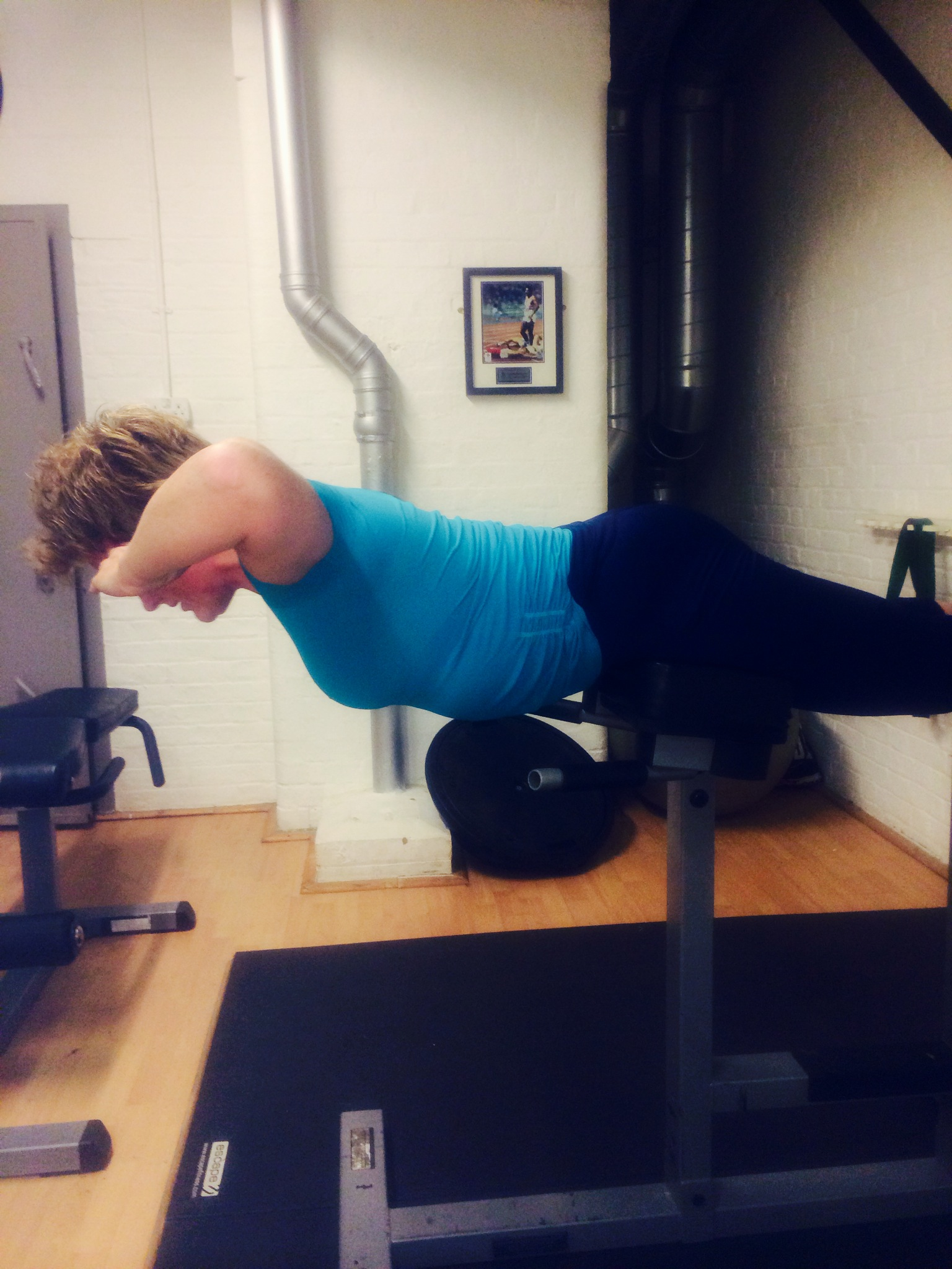 Lower Back and core muscles